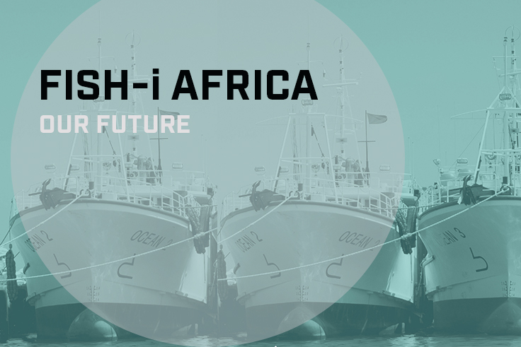 New report launched — FISH-i Africa: Our future